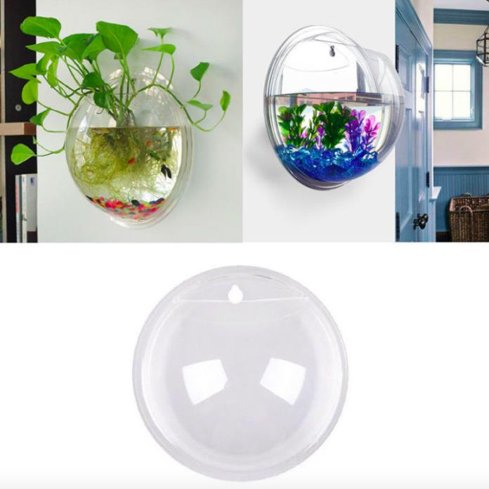 SmallAquariumStarterKit Fish RoundGlass Tank Decoration IndoorPlantDisplay