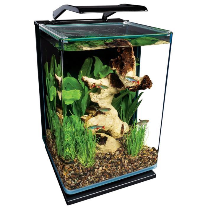 5 Gallon 3 Stage Hidden Back Panel Filtration and Pump Portrait Aquarium Kit