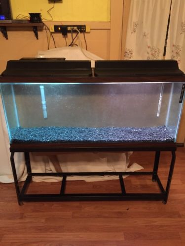 Aquarium 55 Gallon With Stand Two 24 Inch Light Kits Heater Whisper 30-60 Filter