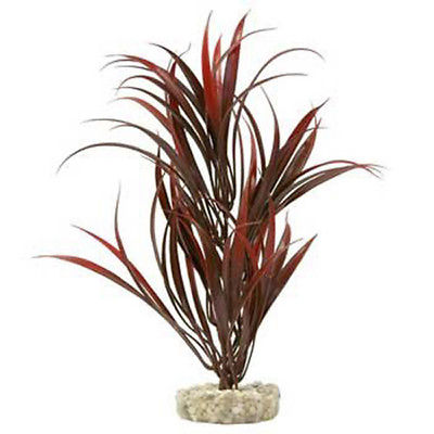BLUE RIBBON - ColorBurst Florals Sword Plant Red - 10 Inches High