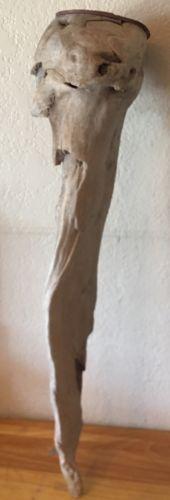 Large Driftwood Art Sculpture Wall Hanging Natural Drift Wood Prop LEG Shaped