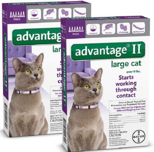 Advantage II Flea Control for Large Cat over 9 lbs - 12 Pack (Free Shipping)