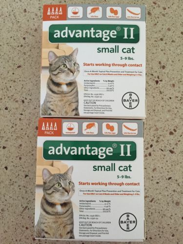 ADVANTAGE II FOR SMALL CATS 8PACK 5-9 LBS NEWEST SEALED BOX EPA APPROVED USA