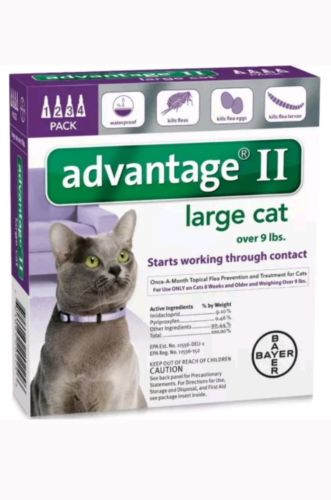 ADVANTAGE II Cat Flea Control over 9 lbs Purple 4 Month