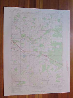 Loomis Michigan 1972 Original Vintage USGS Topo Map