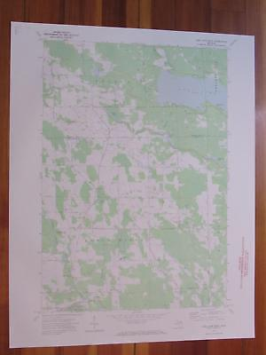 Long Lake West Michigan 1974 Original Vintage USGS Topo Map