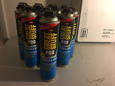 Dow Great Stuff Pro Window and Door 20oz Foam Insulating  sealant   Case of 12