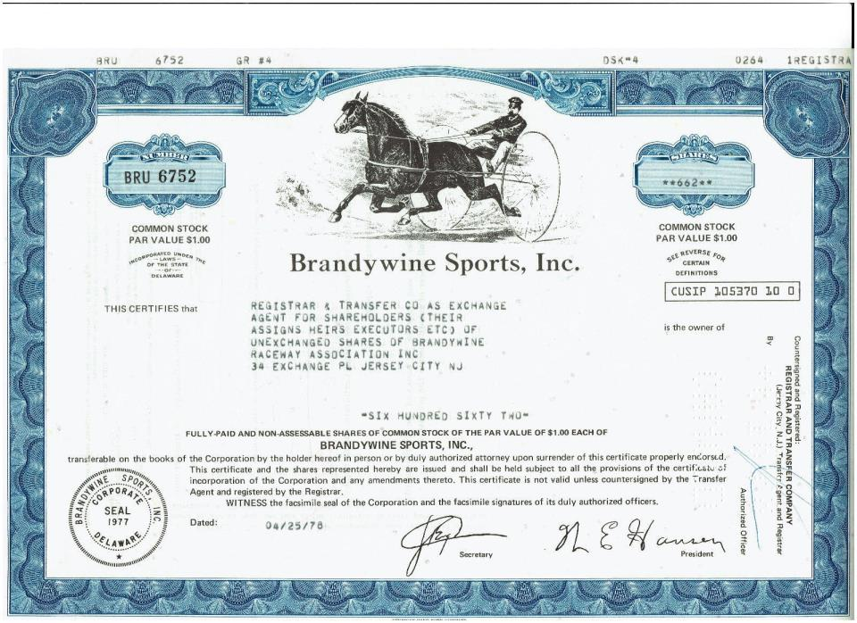 Brandywine Sports Inc horse racing Stock Certificate Rare Vintage Beautiful