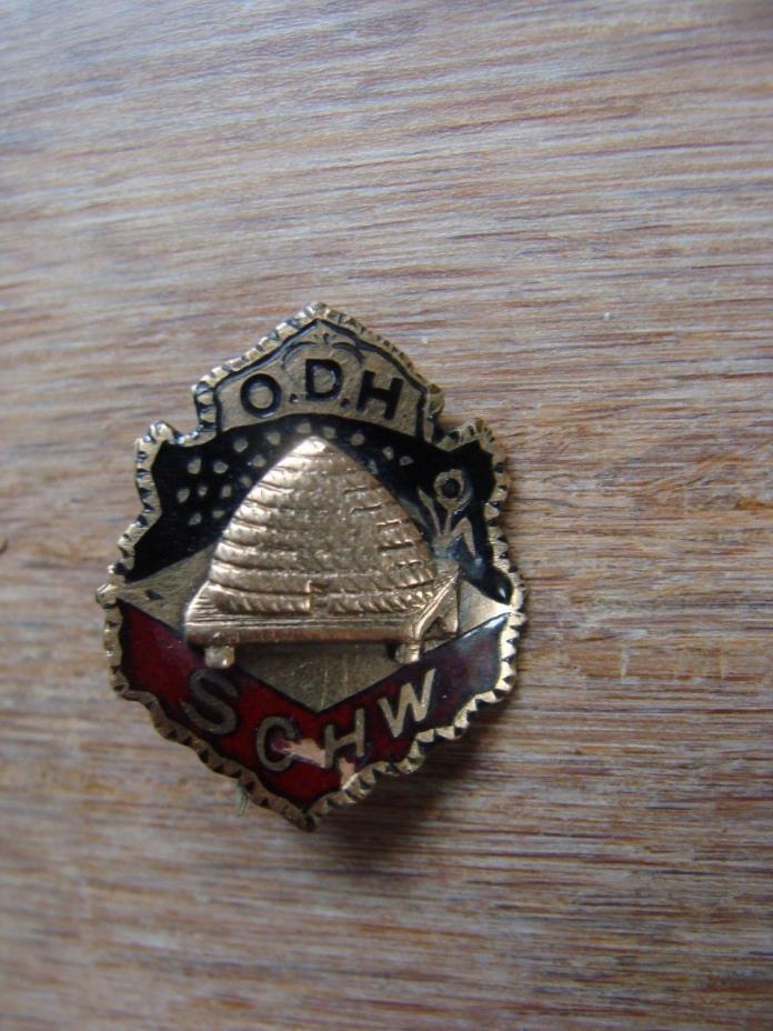 Rare O.D.H. SCHW enamel vintage lapel pinback rope beehive fraternal order