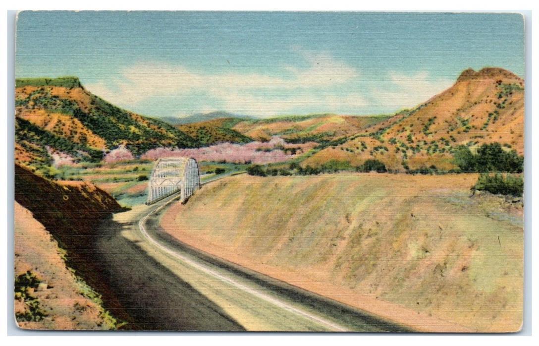 Mid-1900s Rio Grande River Bridge, Santa Fe-Los Alamos Highway, NM Postcard