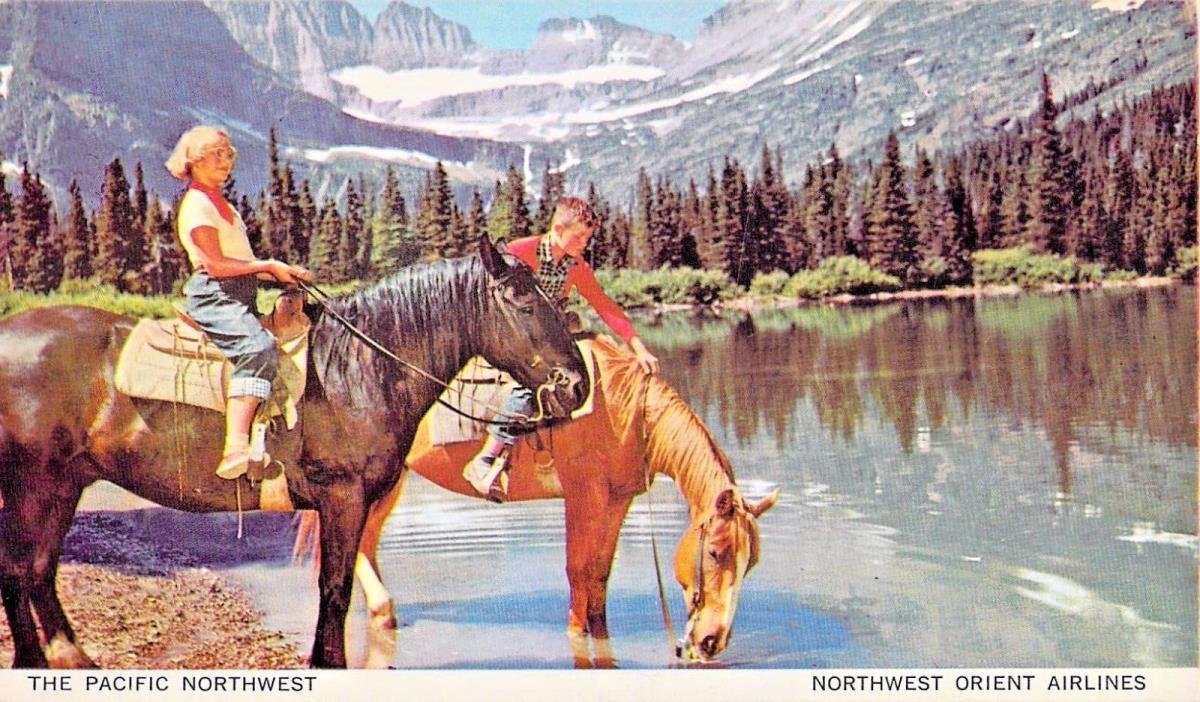Northwest orient Airlines -- The Pacific Northwest -  Horses Stop For A Drink