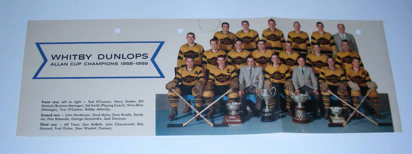 1958-59 Whitby Dunlops Allan Cup CHAMPIONS Hockey Team Picture Vtg color