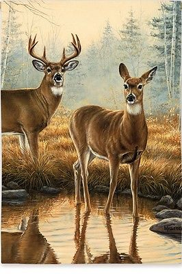 Fall Deer Morning Reflections Buck & Doe Great Outdoors Creek Small Garden Flag