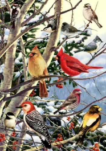 Winter Snowbirds in the Snow Pines Berries Sm Art Flag