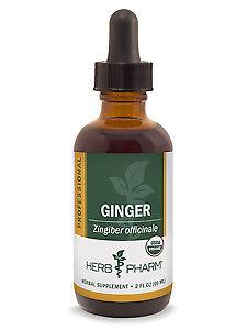 Herb Pharm Professional, Pro-Ginger 2 fl oz
