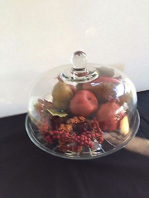 Cake Plate & Dome Glass Use  for Fruit, Cookies or Arrangements