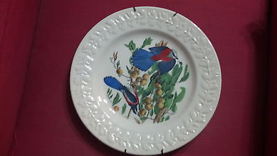 Vintage Adams China John James Audubon THEBIRDS OF AMERICA FLORIDA JAY