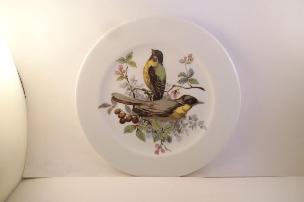 Vintage Schumann Arzberg Germany Decorative Plate Birds