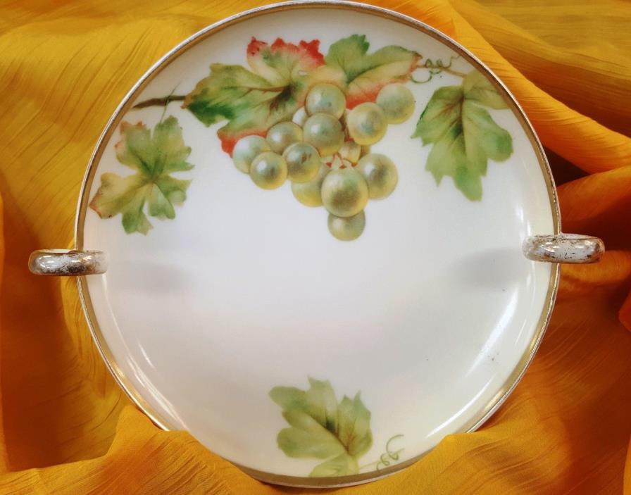 Favorite Bavaria Hand Painted Plate/Dish Grape Leaf Vine,Fruit,Handle Gold Trim