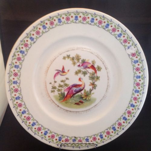 Vintage Czechoslovakia Birds of Paradise Large Dinner Plate