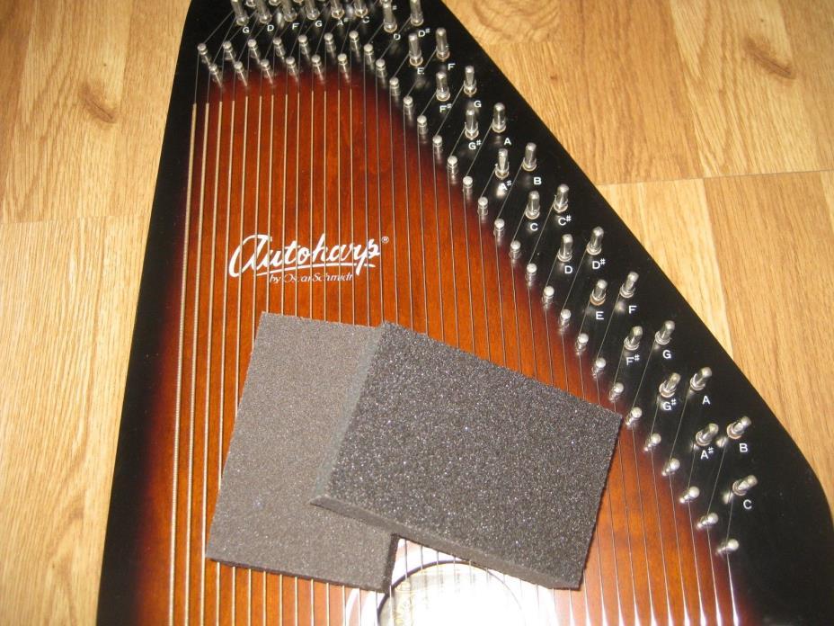 Metal String Cleaning Sponges for Autoharp Hammer Dulcimer Zither Harp Guitar