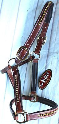 orse Riding Western English Brown Leather Halter Bling Brown Tack 927MT13P