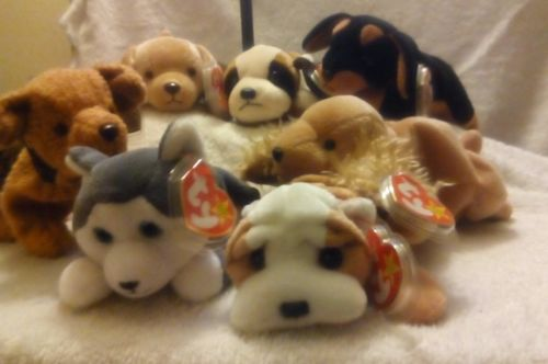 Seven Ty Beanie Babies Dogs