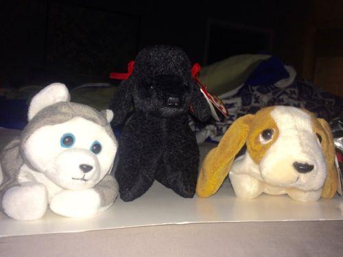 Lot of 3 Retired Ty Beanie Babies Dogs: Nanook, Gigi, Tracker (ERRORS) 1996-1998