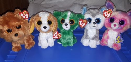 TY Beanie Boo dog lot - Dill, Barley, Slush, Cancun & Cookie