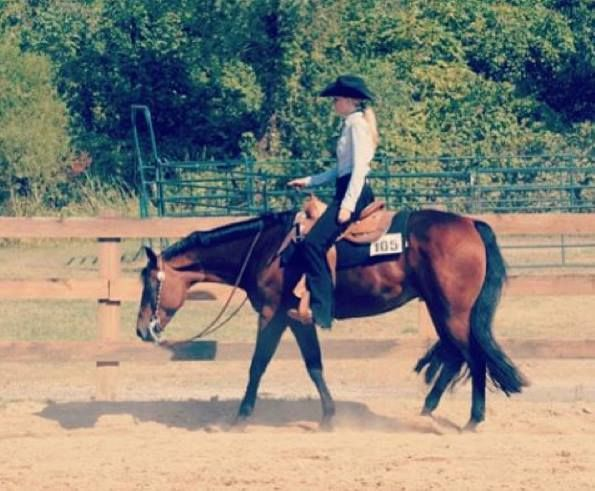 2004 Registered AQHA western pleasure mare ROM multiple pt and earner