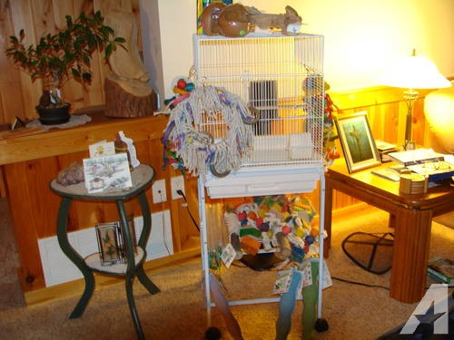 New Bird Cages, Play Stands, Toys & Tropimix Food(Used also available)