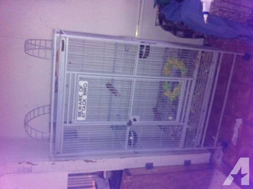 Big parrot cage! Great condition!