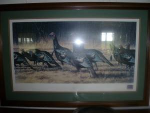 Wild Turkey Print by O.J. Gromme (Sequim)