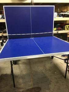 Table Tennis Table (Bartlett)