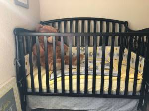 Crib with linens and art (Valle Vista)