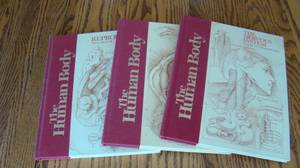 Lot of 15 Human Body Books (Perryville)
