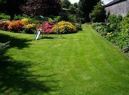 lawn &landscape business for sale (SE plano/murphy)