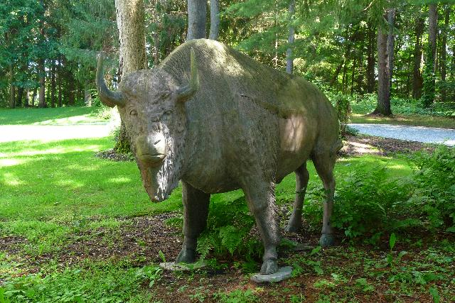 Bison Sculptures