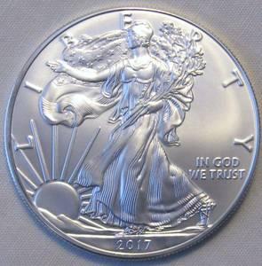 2017 Silver Eagle Coins (Rocky Mount)
