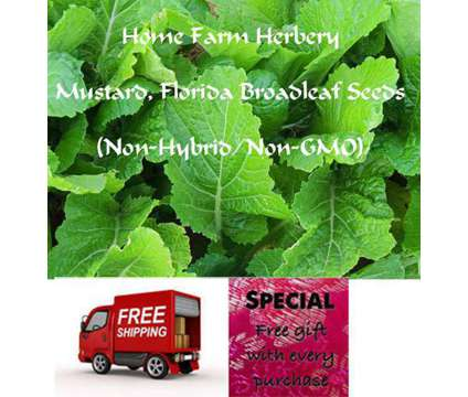 Mustard, Florida Broadleaf Seeds, Order now, FREE Shipping & a free gift