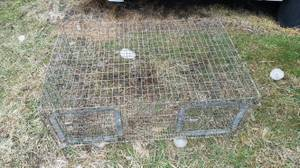 lots of wire rabbit cages //// good cages (MARYSVILLE)