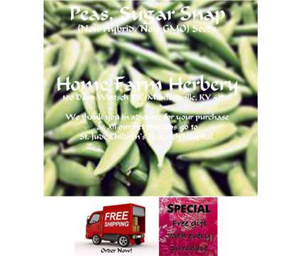 Peas, Sugar Snap Heirloom Seeds, FREE Gift , FREE shipping, Order now