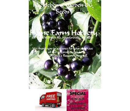 Huckleberry, Garden Heirloom Seeds, Order now, FREE shipping & a free gift
