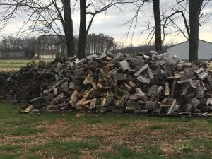 Firewood (New Palestine)