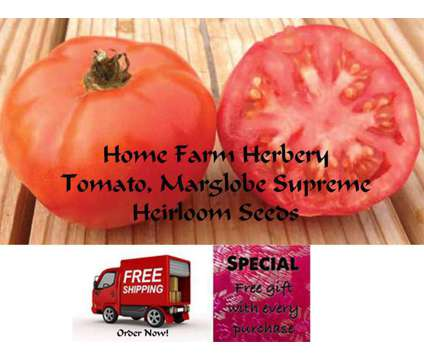 Tomato Marglobe Supreme Heirloom Seeds, Order now, FREE shipping & a free gift