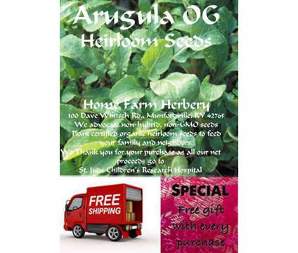 Arugula Heirloom seeds, Order now & get FREE shipping & a FREE gift