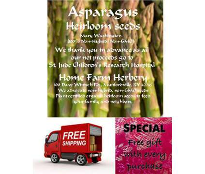 Asparagus, Mary Washington Seeds, Order now, FREE shipping & a FREE Gift