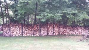 firewood (degraff)