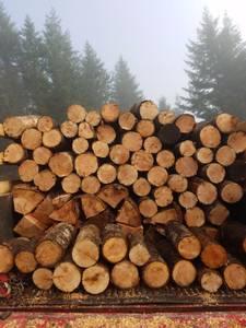 Firewood fir with some hardwood mix (Eugene)
