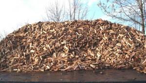 Hardwood Firewood (KEESEVILLE)